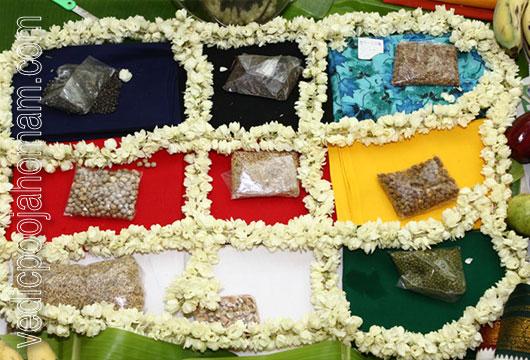 Navagraha Homam | Vedic Pooja Homam