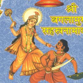 Sri Baglamukhi Homam